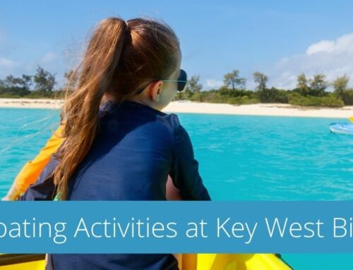Key West Bight Marina Presents Family Friendly Boating Activities for the Summer